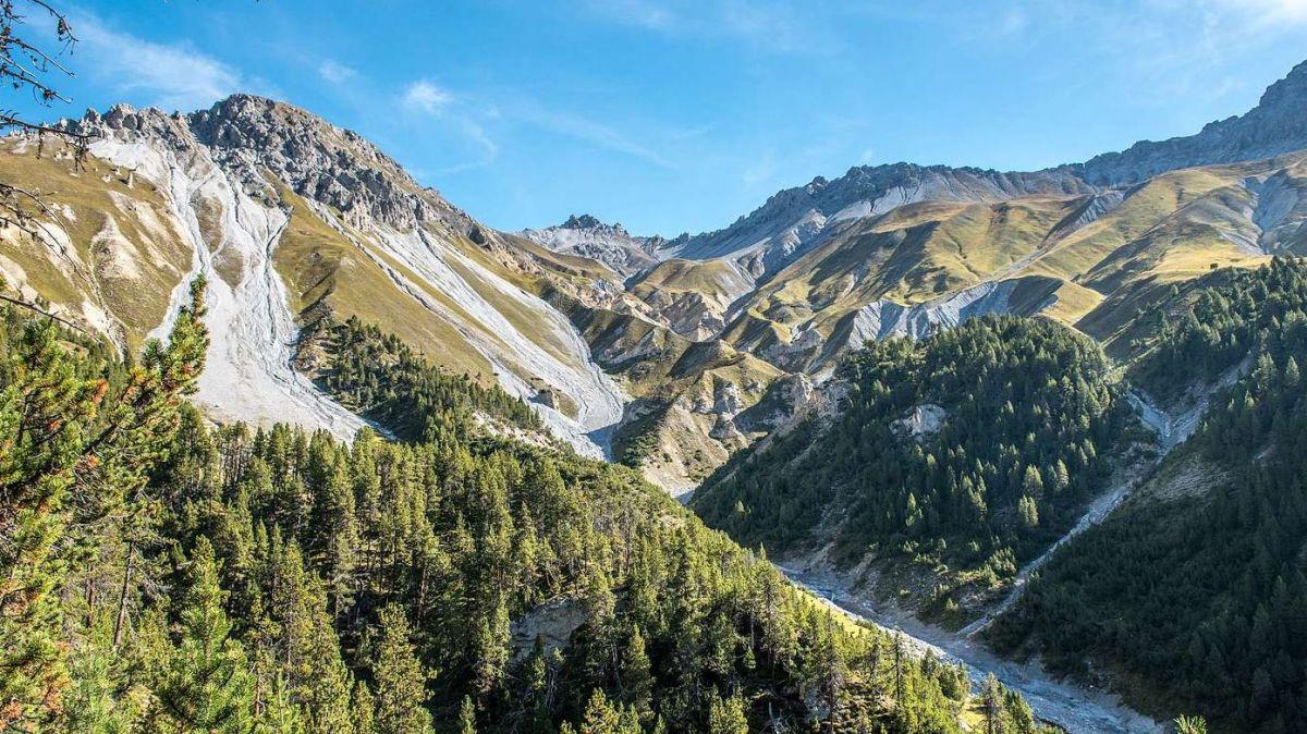 La nouva revista dal Parc Naziunal Svizzer s'occupa da l'ecologia illas zonas alpinas (fotografia: Hans Lozza/PNS).