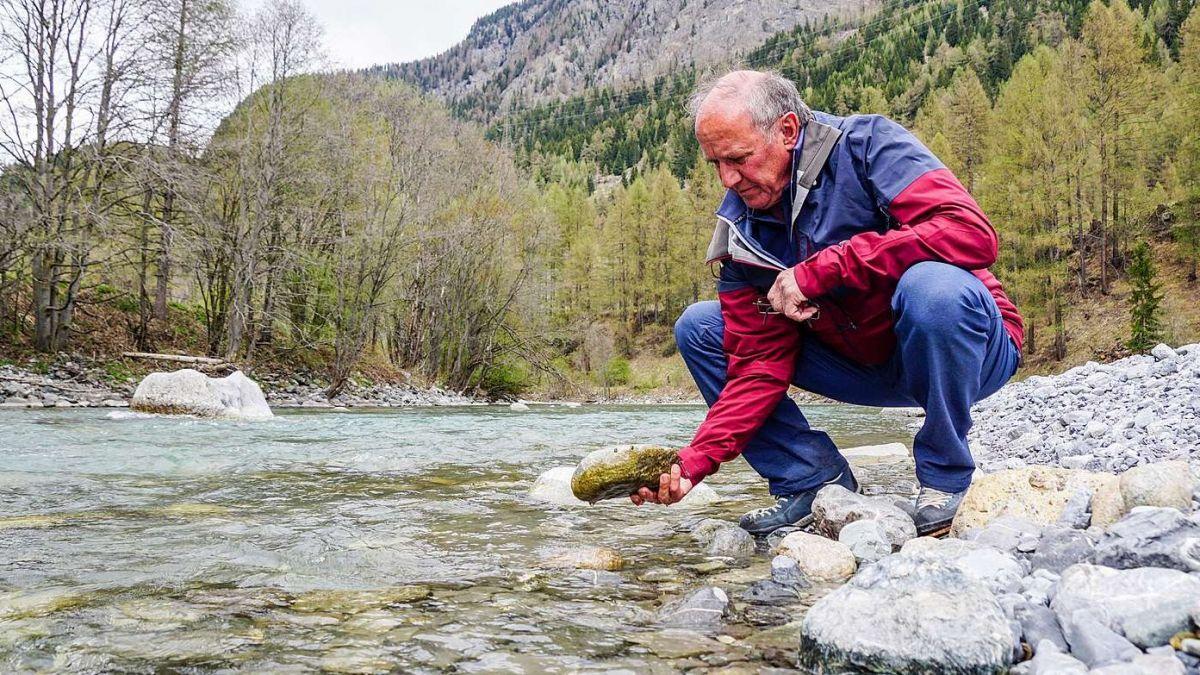 Wurde beruflich auf autodidaktischem Weg vom Schreiner zum Umweltexperten: Pio Pitsch aus Müstair. Hier am Inn bei Zernez. Foto: Jon Duschletta