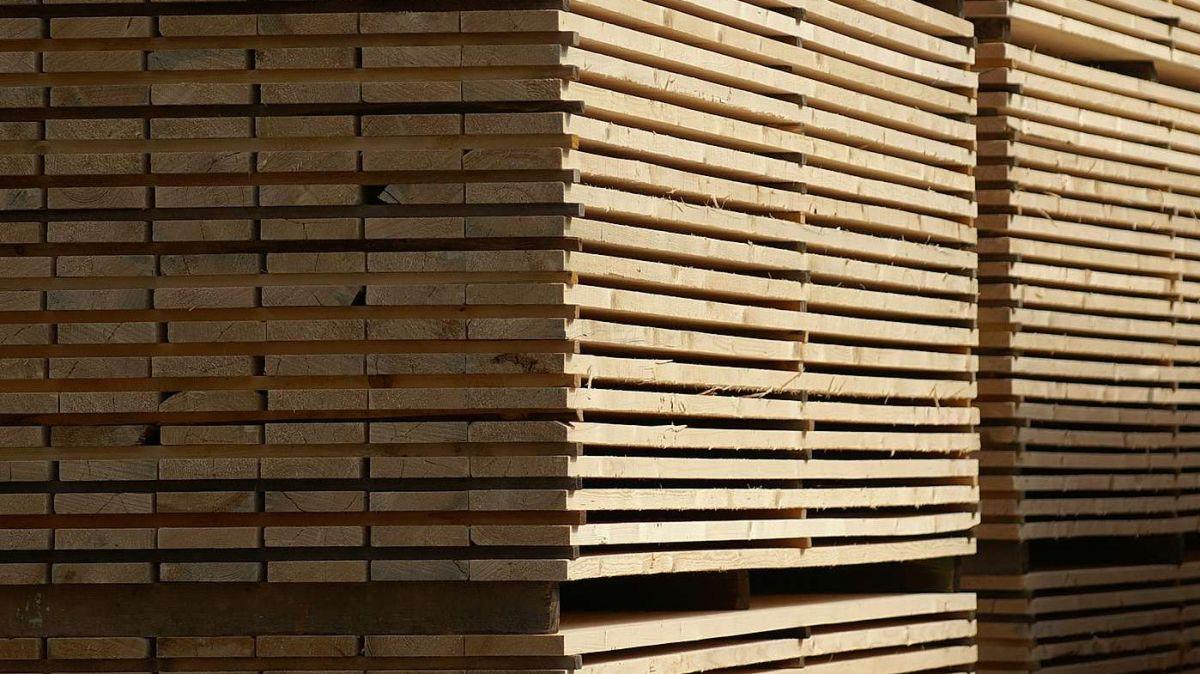 Gegen die Gemeinde S-chanf läuft ein Betreibungsverfahren in Millionenhöhe wegen nicht geliefertem Holz (Symbolbild: Jon Duschletta).