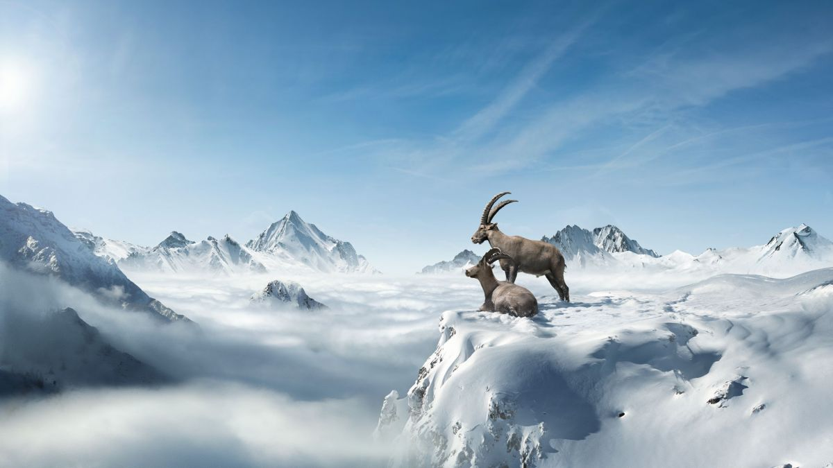 Illustration: Graubünden Ferien