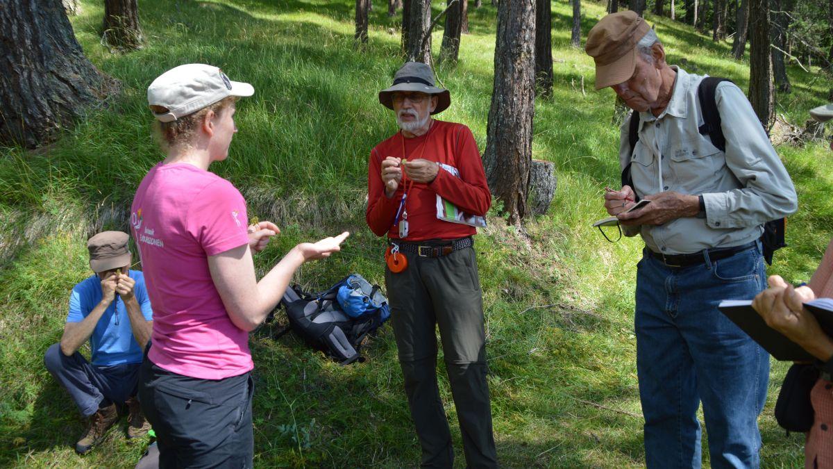 La biologa da Ramosch Constanze Conradin pro ün dals cuors da botanica ch'ella ha dat pella Pro Terra Engiadina (fotografia: Angelika Abderhalden).