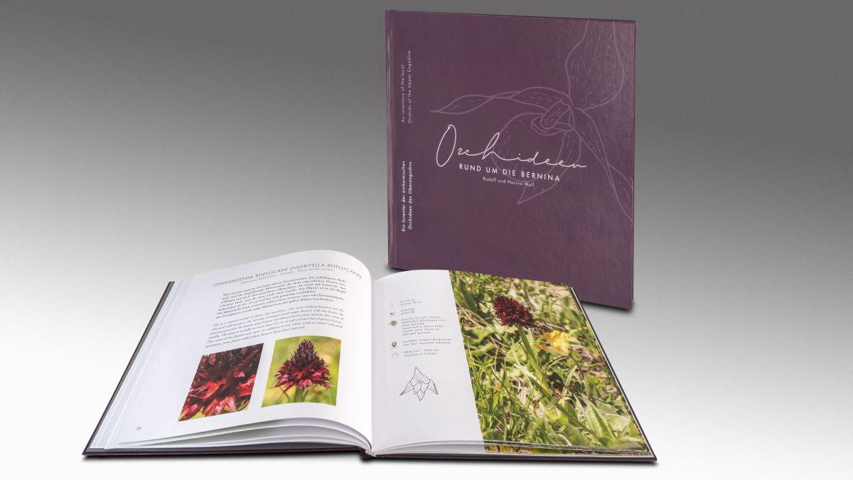 Das Buch «Orchideen rund um die Bernina» beschreibt die hiesige botanische Vielfalt. Foto: Daniel Zaugg