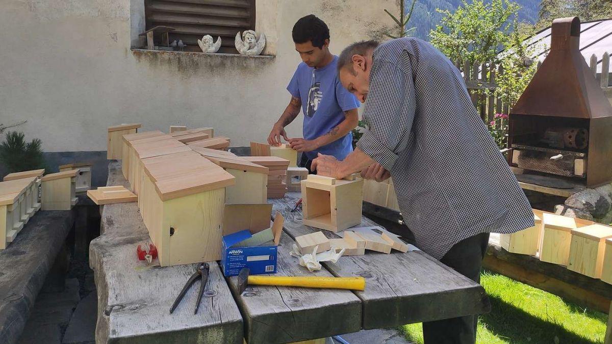 A Lavin han ils voluntaris imprais a far chasinas per las randulinas (fotografia: Sara Castillo).