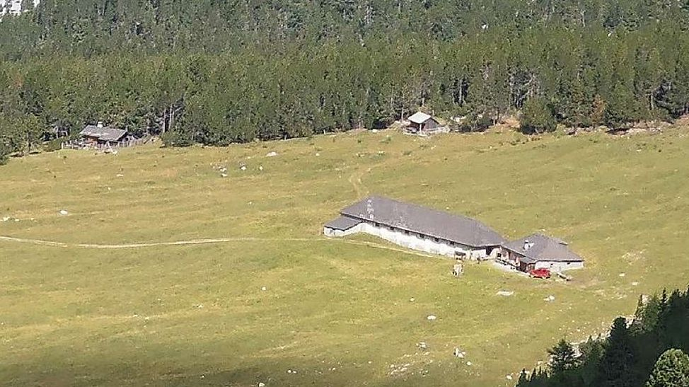 La fotografia muossa l'Alp Plavna a Tarasp cun duos chamonnas da chatscha. fotografia: Benedict Stecher
