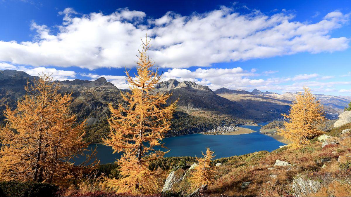 Das Oberengadin in einer schönen Jahreszeit wandernd entdecken. Viele Personen aus der ganzen Schweiz haben das Silvaplaner Angebot wahrgenommen. Foto: Enagdin St. Moritz AG