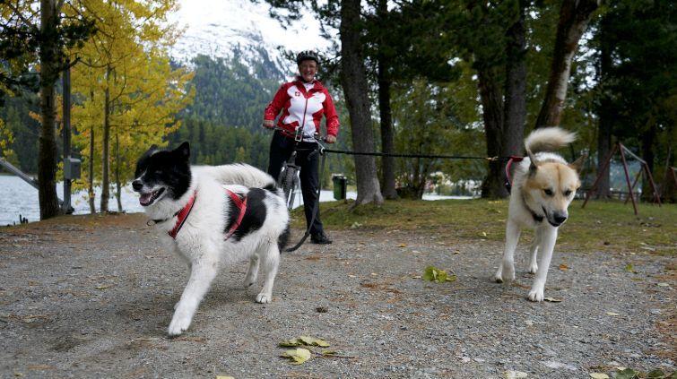 Barbara Iserhardt mit ihren Hunden Tinka's Pers Oq und Idita's Myrthe. In schneefreien Monaten wird auf dem Tretroller trainiert. Foto: Denise Kley