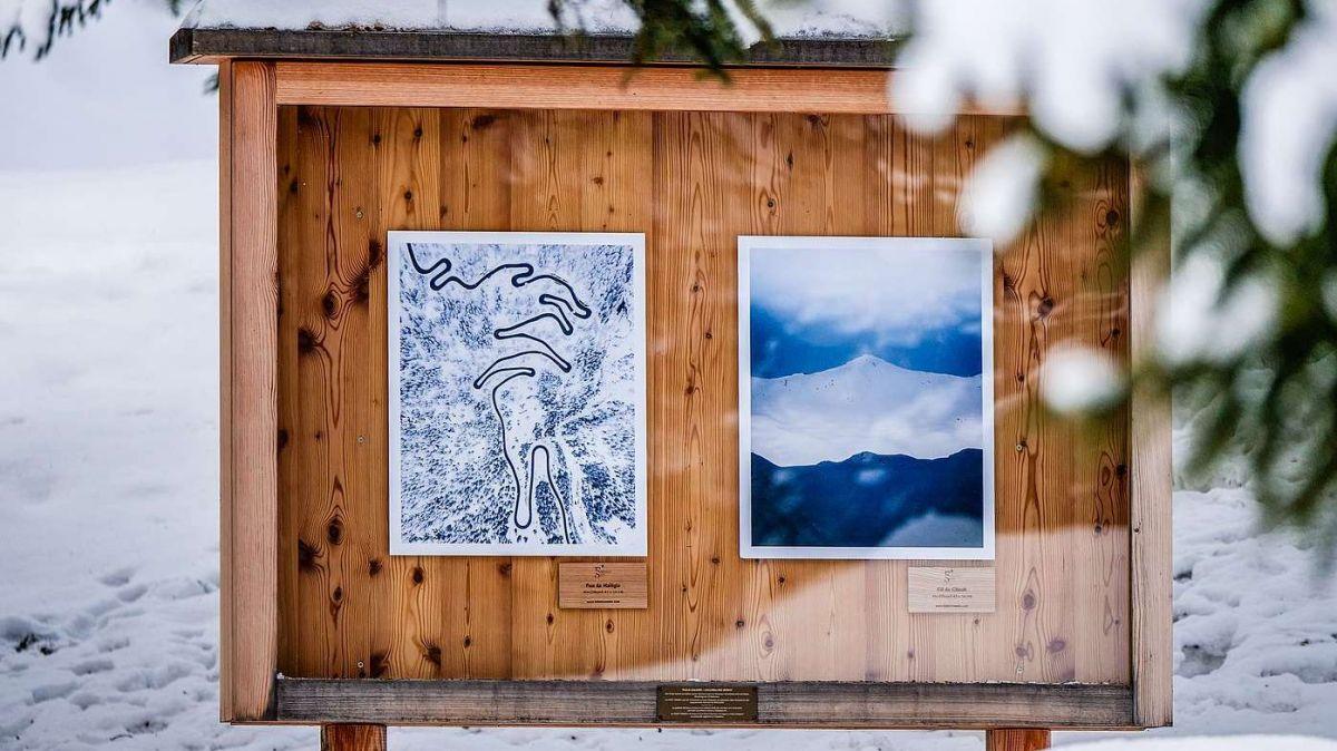 Federico Settes Fotografien beleben die Waldgalerie in La Punt Chamues-ch. «Durch diese Ausstellung ist in mir der Wunsch erwacht, in Zukunft mit grösseren Bildformaten zu arbeiten», so Sette. Foto: Jon Duschletta