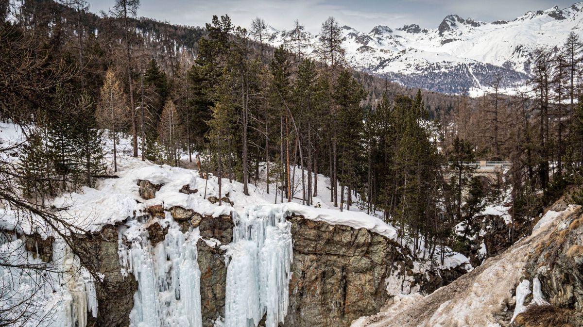 Im Winter wird die Berninabachschlucht von den Eiskletterern in Beschlag genommen. Foto: Daniel Zaugg