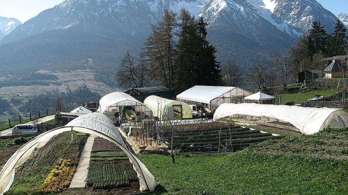 La Giardinaria Lehner a Ftan resta serrada (fotografia: mad).