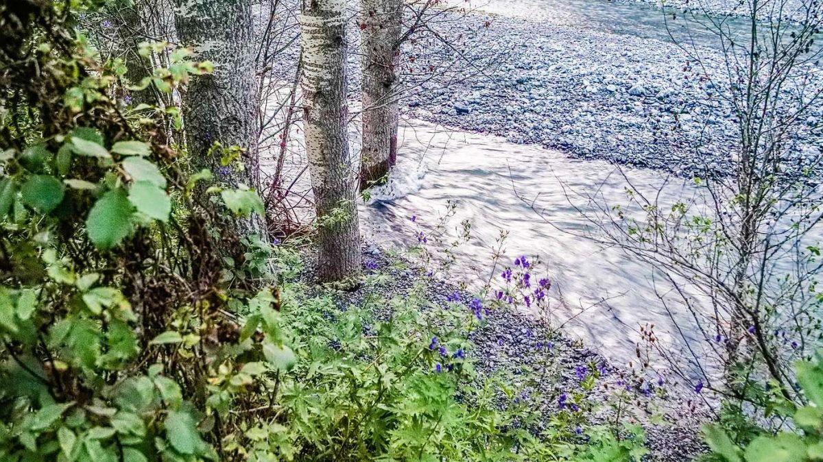Glaubt man den Forschern, so wird der Klimawandel den Umgang mit der Ressource Wasser nachhaltig verändern.  Im Bild der Spölbach bei Zernez. Foto: Jon Duschletta