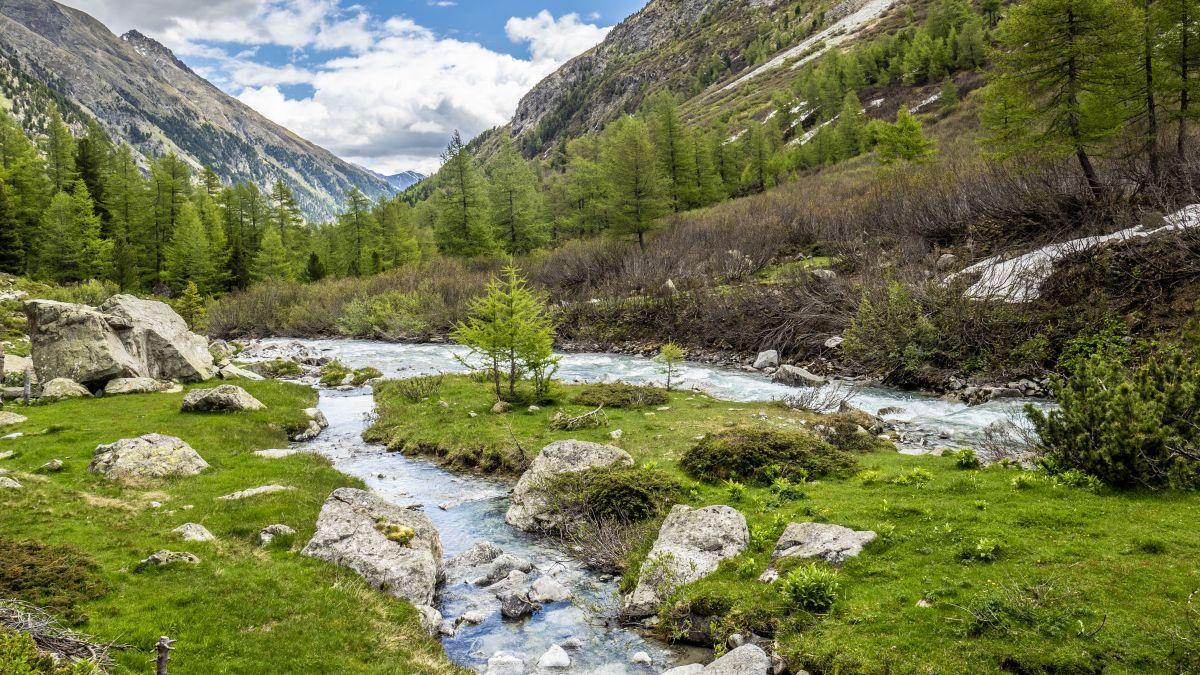 Der Beverin ist ausgezeichnet worden - als besonders schützenswertes Gewässer. Foto: Daniel Zaugg