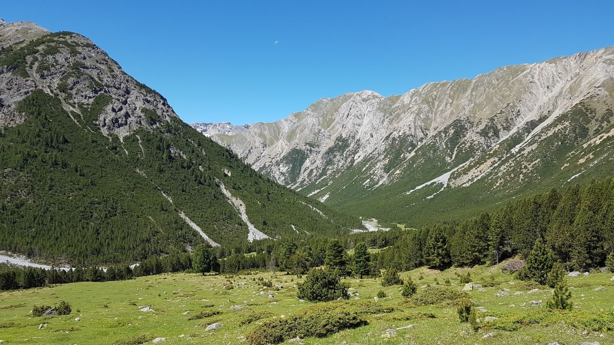 La Val Mora es ün magnet turistic (fotografia: Tiziana Caratsch).