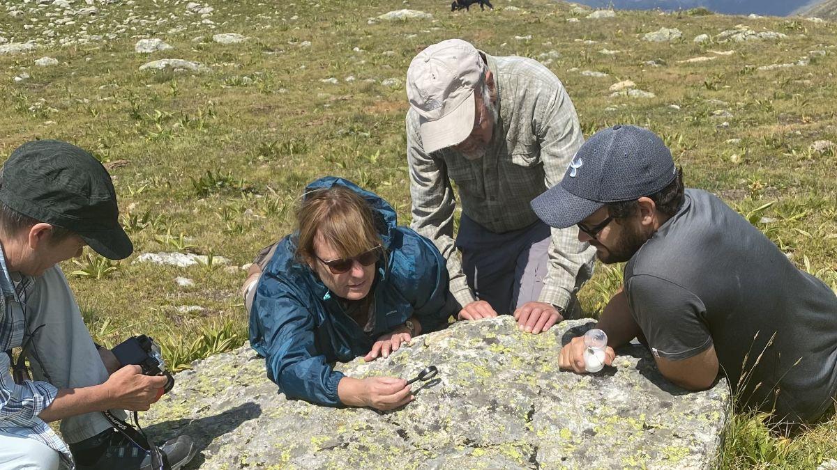 Christian Roesti (ganz rechts) erläutert das Paarungsverhalten der nordischen Gebirgsheuschrecke.  Foto: David Jenny