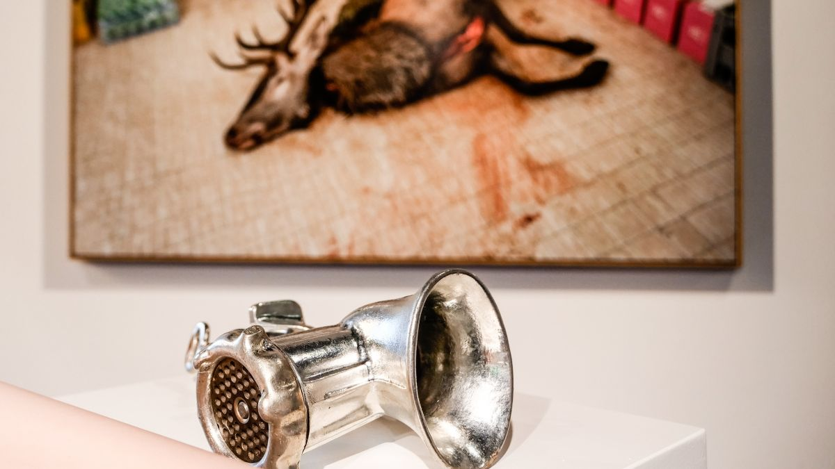 Blick in die Jagd-Ausstellung im Alpinen Museum der Schweiz in Bern. Foto: Jon Duschletta