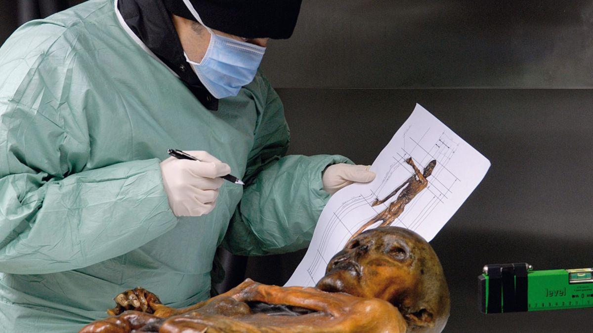 In mehr als 600 Einzeluntersuchungen ging man dem Leben von Ötzi auf den Grund. Er ist der am besten untersuchte Mensch weltweit.  Foto: Südtiroler Archäologiemuseum, Eurac, Samadelli Staschitz