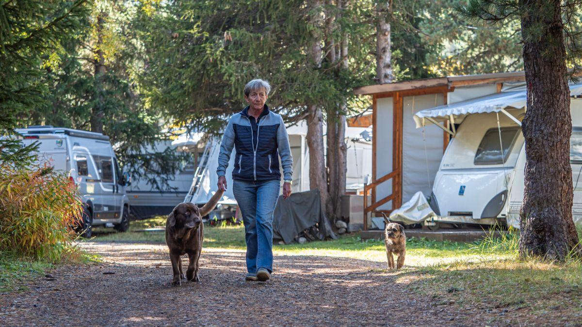 Die 64-jährige Camping-Wartin Brigitte Conte bei einem Rundgang mit Zambo und Gin auf «ihrem» TCS Campingplatz Samedan. Foto: Daniel Zaugg