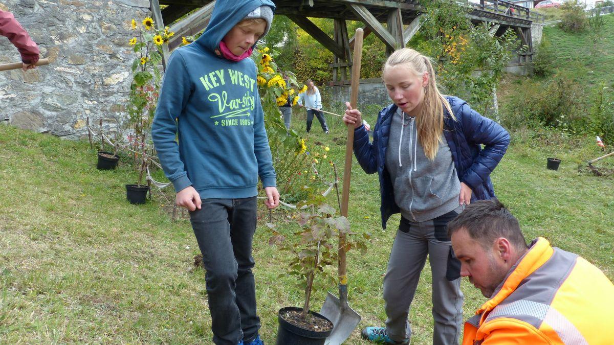 Il silvicultur Gisep Rainolter ha güdà a las scolaras e scolars da la prüma secundara ad implantar la bos-cha (fotografia: Flurin Andry).