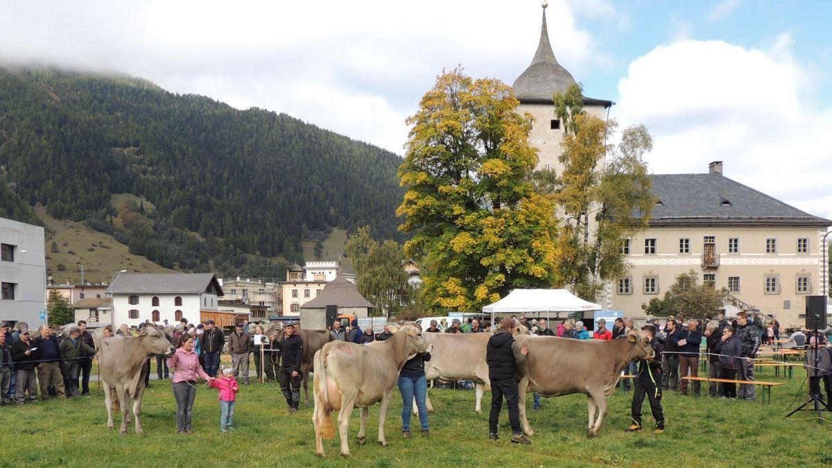 La plazza da faira a Zernez es predestinada per ün tal arrandschamaint (fotografia: Benedict Stecher).