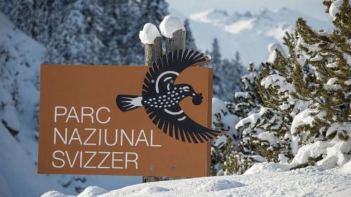 Il Parc Naziunal Svizzer survain sustegn finanzial dal Chantun e dals cumüns (fotografia: PNS