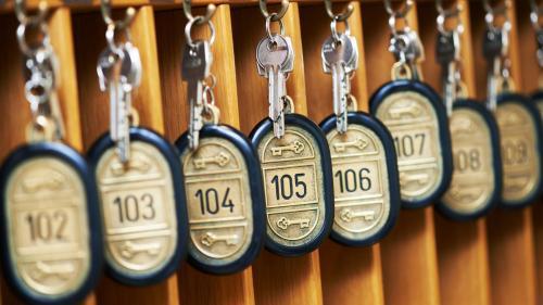 Foto: shutterstock.com/Dmitry Kalinovsky