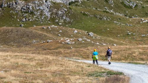 In der Natur sollen sich diesen Sommer coronamüde Touristen erholen. St.Moritz und die Region haben diesbezüglich viel zu bieten. Foto:  Daniel Zaugg