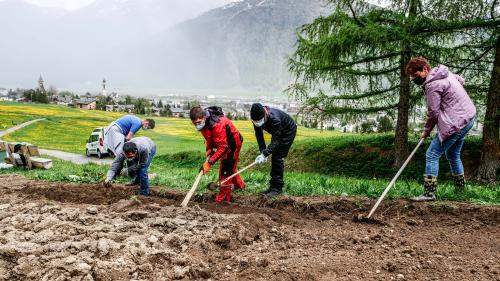 Klienten und Betreuer der Ufficina Samedan bearbeiten den Schauacker am Naturpfad La Senda bei Samedan. Fotos: Jon Duschletta