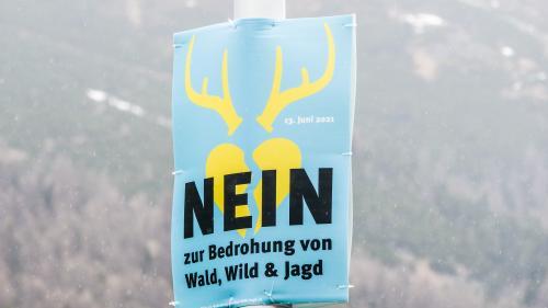 Trotz klarem Volks-Nein zur Jagdinitiative bleibt die Jagdpolitik gefordert, angeregte Verbesserungen weiter in die Jagdplanung einzubinden. Foto: Jon Duschletta