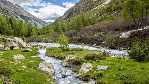 """Der Beverin ist der erste Fluss der Schweiz, der den Titel """"Gewässerperle Plus"""" tragen darf. Foto: Daniel Zaugg"""
