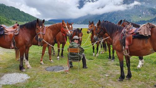 Men Juon ama las turas cun chavals in cuntradas alpinas (fotografia: mad).