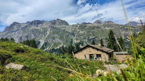 Auf der Alp Prasüra oberhalb von Sils lässt es sich gut leben als Hirte.