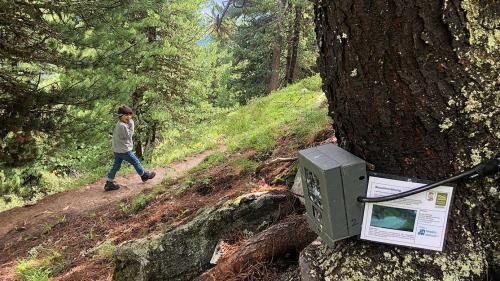 Cun da quists apparats sco qua in Val Vau vegnan fotografadas persunas chi passan speravia. fotografia: David Truttmann