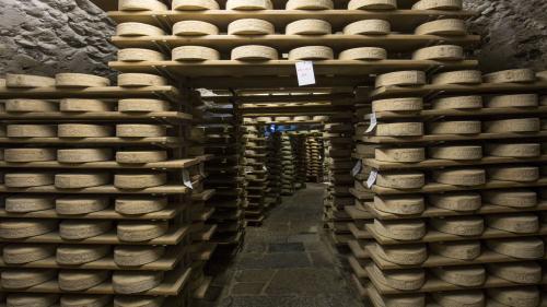 """Bezeichnend für Chiavenna sind die Lagerhöhlen, """"Crotti"""" genannt. Foto: Valchiavenna Turismo"""